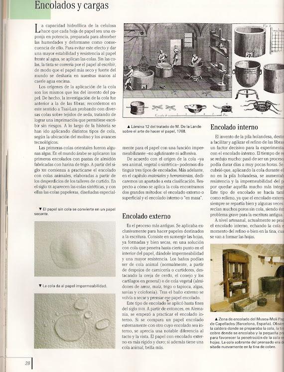 papel 6