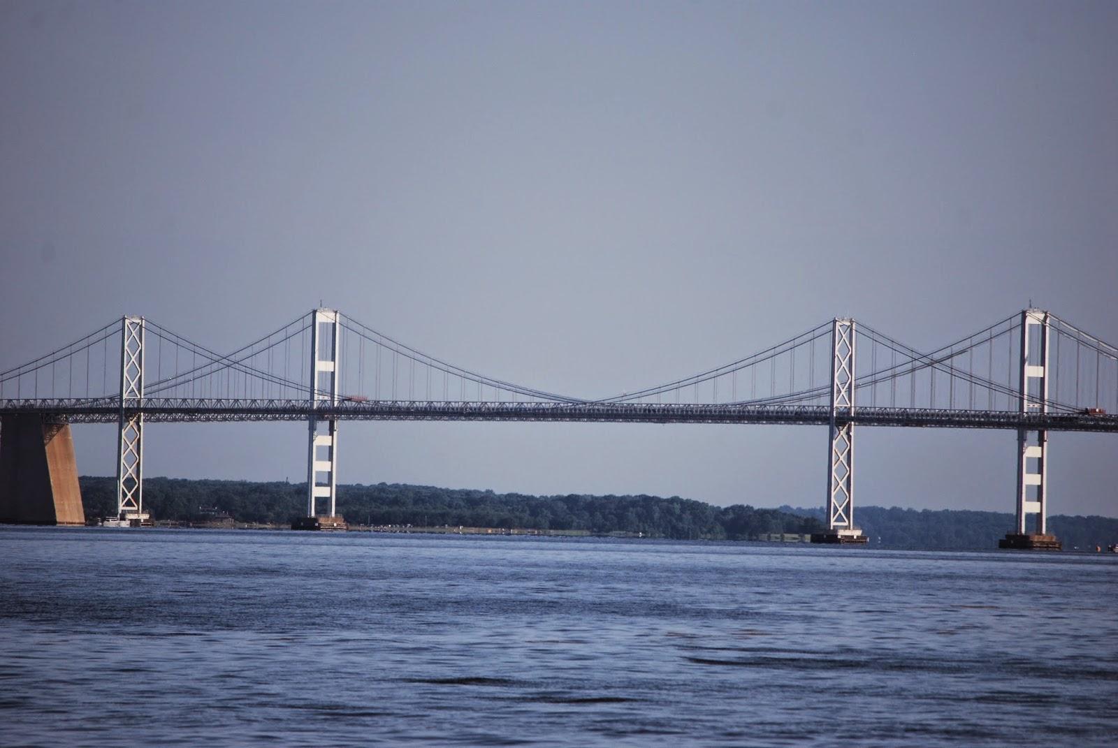 Vote no 39 malley matapeake state park fishing report for Chesapeake bay bridge fishing report