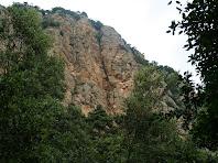 El corriol s'acosta a les parets de Tastanós