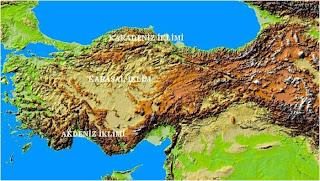 Türkiye Fiziki İklim Tipleri Haritası
