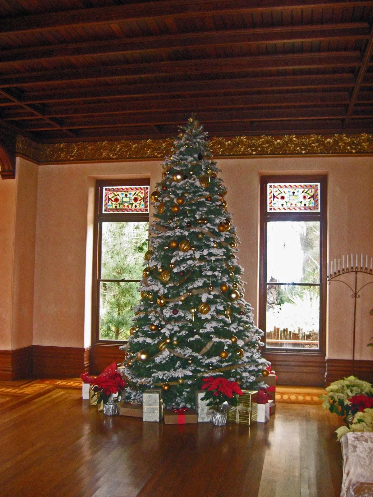 Spring Mountain Christmas Tree