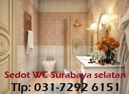 Sedot WC Surabaya Selatan Area wonokromo