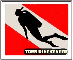 TOMS DIVE CENTER