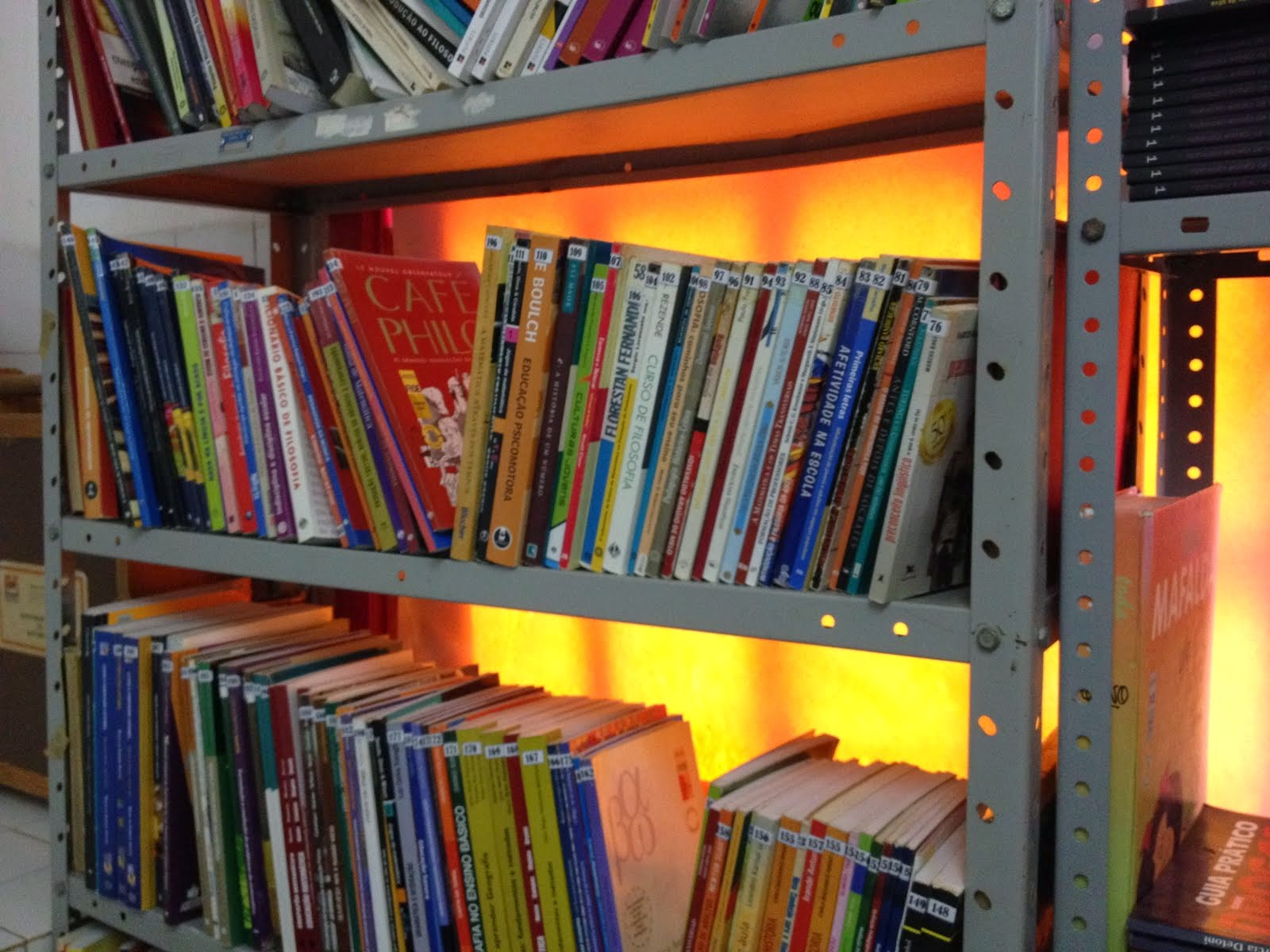 Visite a Biblioteca da UEPA