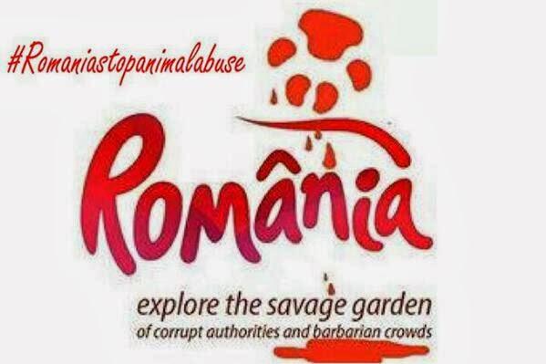 Hundemord in Rumänien
