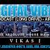 Digital Vibes Podcast (Long Drive) Air 3 - DJ Vikas J