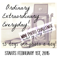 Ordinary Extraordinary Everyday Mini Photo Challenge