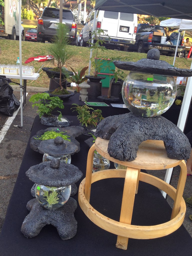 Aquaponic garden tips understanding aquaponic for Fish garden system