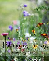 http://blandrosorochbladloss.blogspot.se/