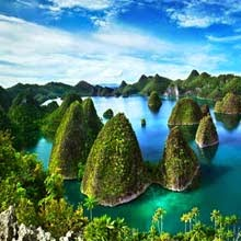 Raja Ampat Diving Tour Package