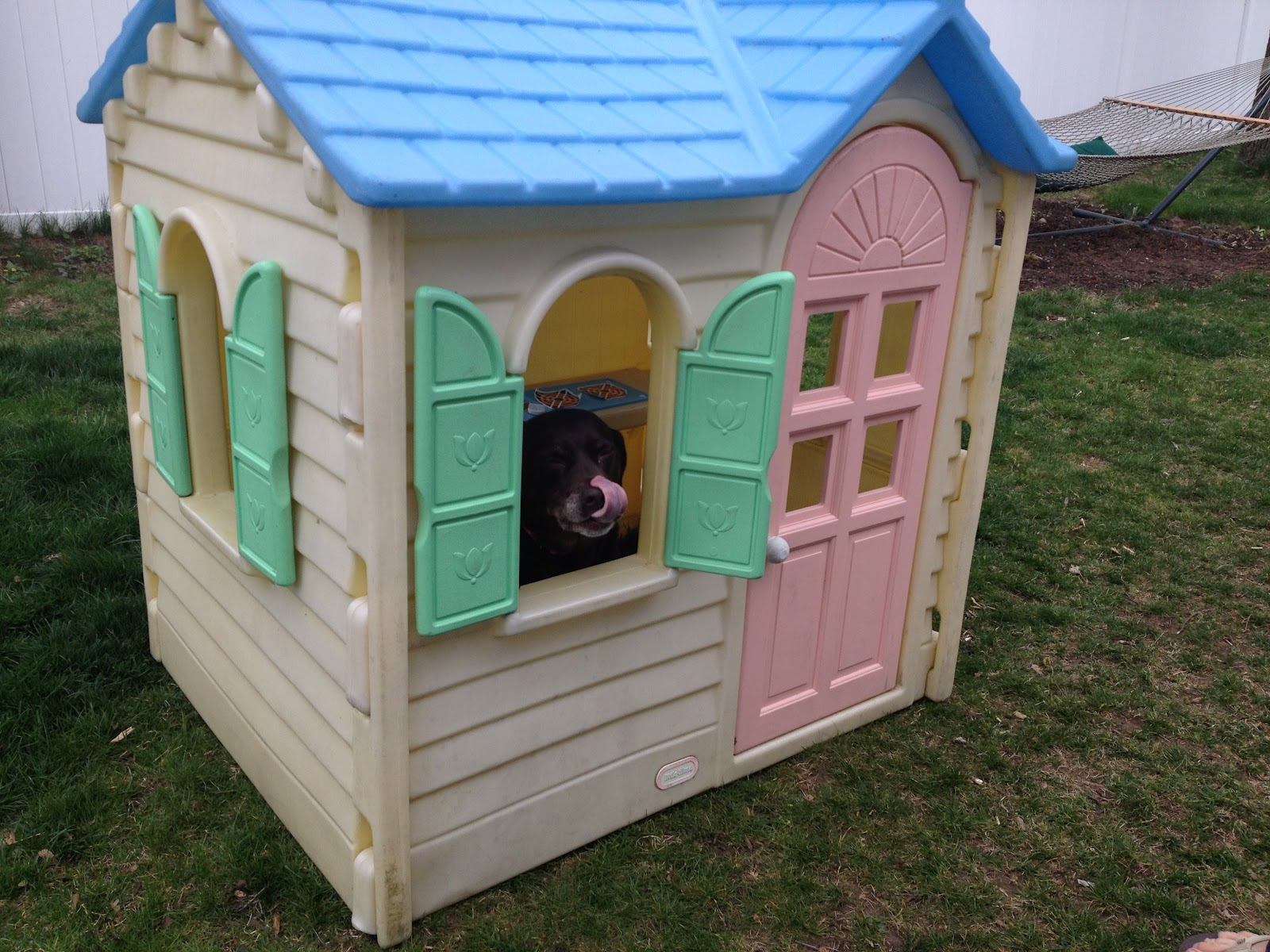 Life and style a to z p playhouse for Big kids play house