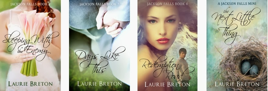 premade book covers adjusted for series