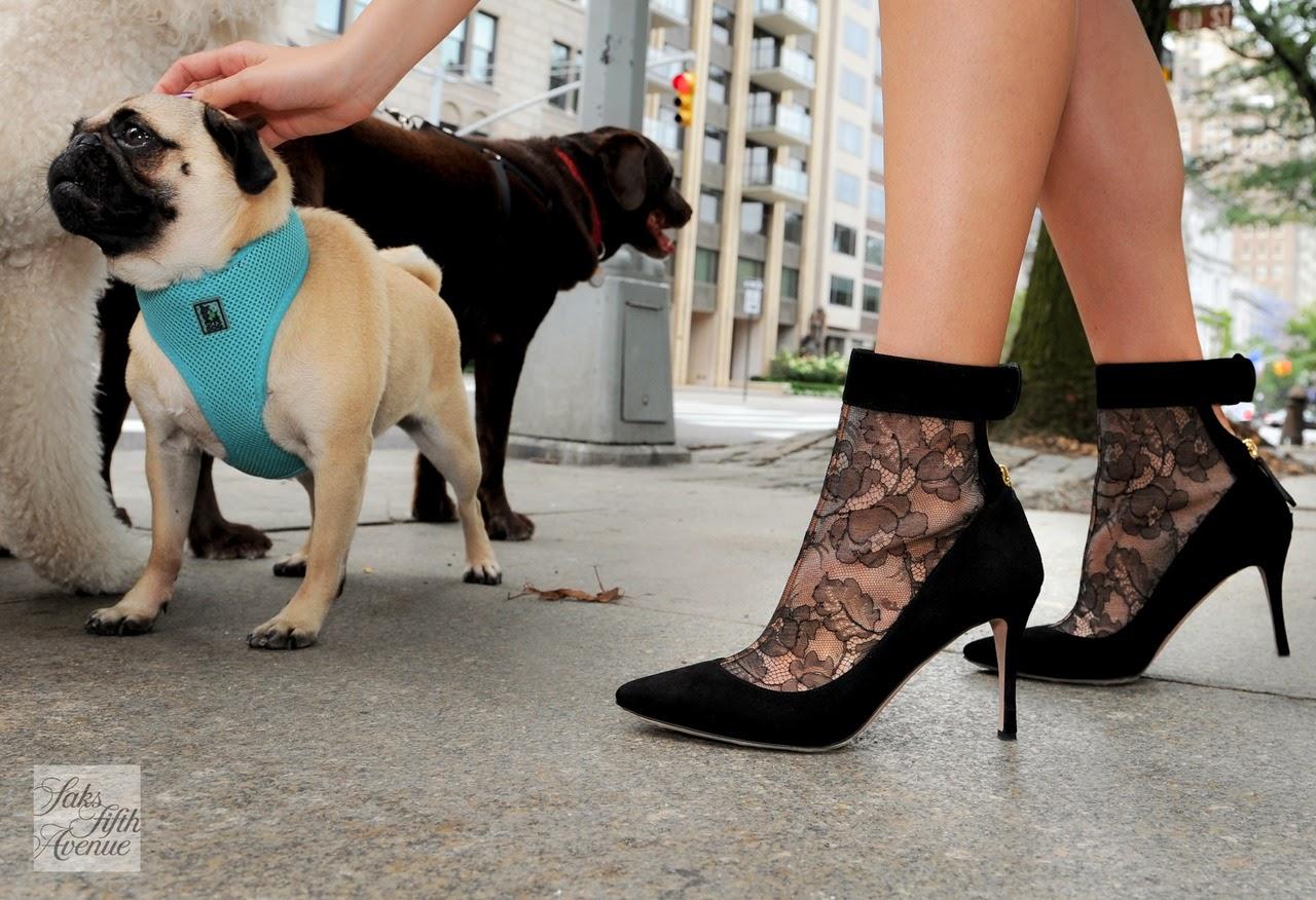 Magníficos zapatos de fiesta | Colección