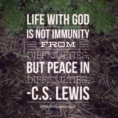 Life with God is not immunity from difficulties, but peace in difficulties. - C.S. Lewis