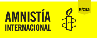 amnistia.org.mx