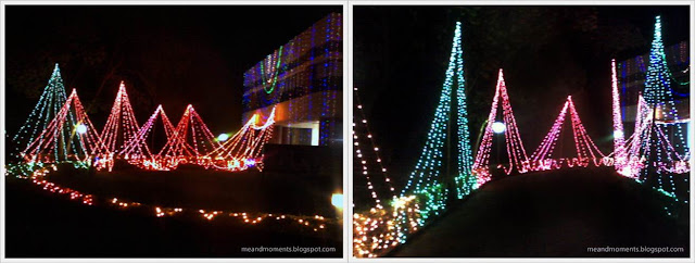 street decoration, Diwali light decoration, wedding light decoration, house decoration with lights