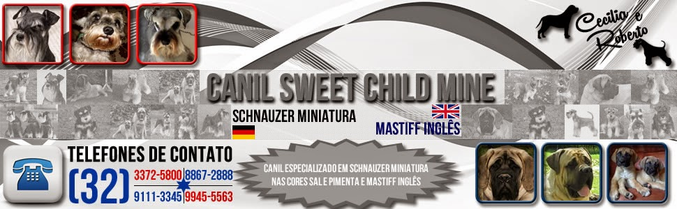 Canil Sweet Child Mine