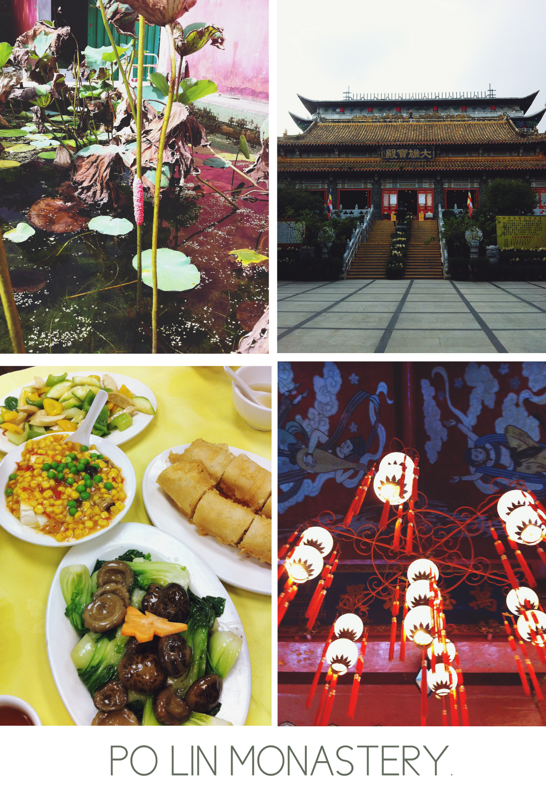 beautiful Po Lin Monastery, plants and architecture and food.