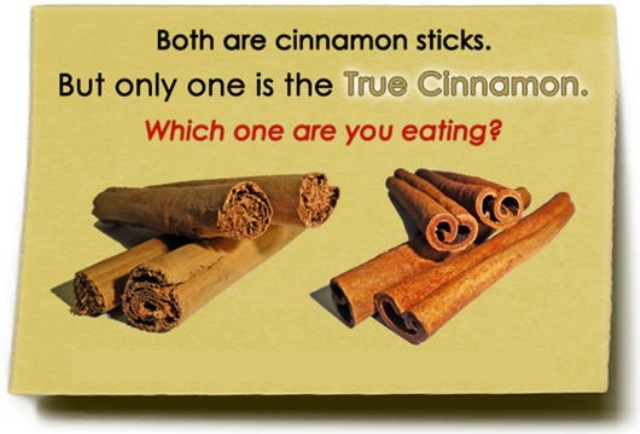true-cinnamon-from-sri-lanka