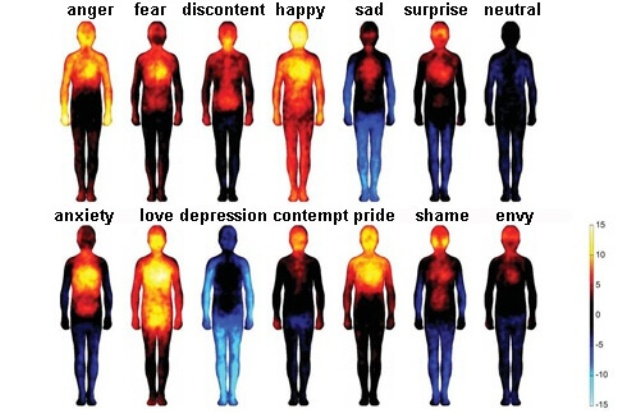 thoughts and emotions in the body