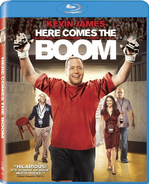 Here Comes the Boom (2012) BluRay 720p 800Mb Mkv