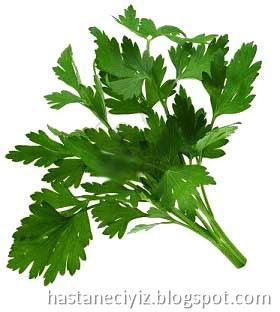 maydanoz, maydonoz, parsley