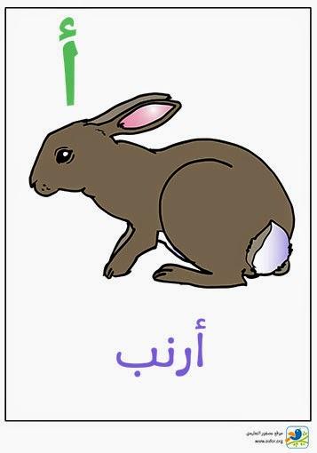 ملصق تعليمي للأطفال لتعليم حروف الهجاء (حرف الألف) www.osfor.org