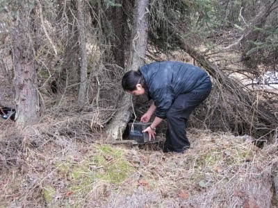 A picture of Anita Wirawan putting a geocache in the woods.
