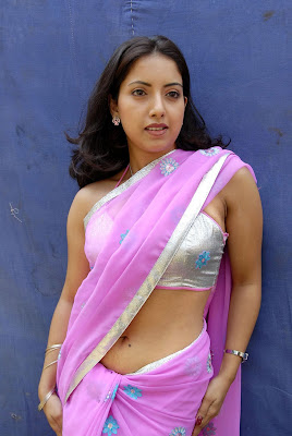Actress Preethi Mehra Hot Saree Photos