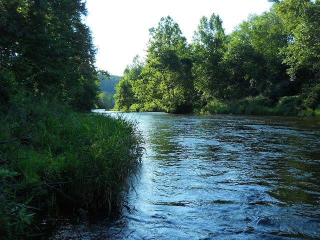Small stream reflections farmington a lesson learned for Farmington river fly fishing