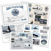 The J14s Orca Booklet ADDED!