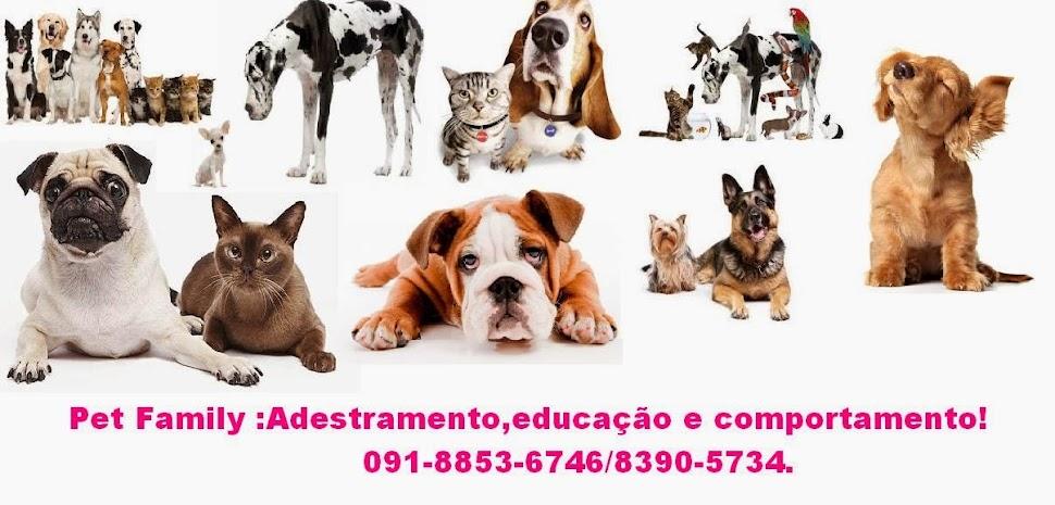 Marcio Santos adestramento 091 8853-6746 !