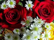 si potrebbero scrivere tante parole sui fiori e tutte farebbero rima con te. (fiori)