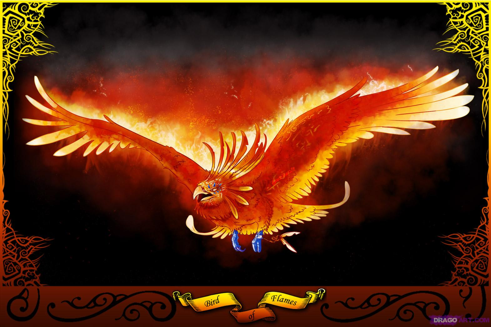 the phoenix bird Fanpopcom this phoenix mythical creature which is drawn in golden color mimics real phoenix bird with its feathers artistically designed the feathers of the wings and tail are provided with awesome color combinations.