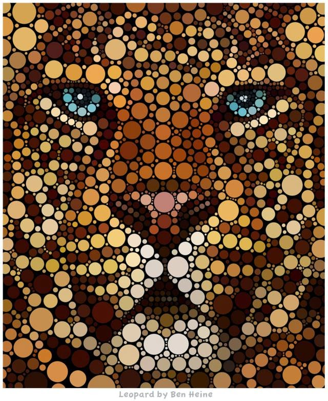 Benjamin Heine, Digital Circlism, Leopard