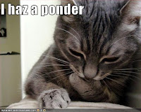 I haz a ponder....about contest themes