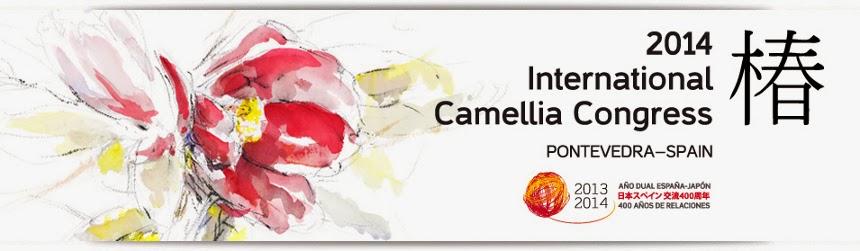 http://www.camellia2014.depo.es/web/camelia/inicio