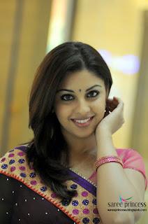Mirapakaya heroine Richa Gangopadhyay saree shots from her latest film Osthe