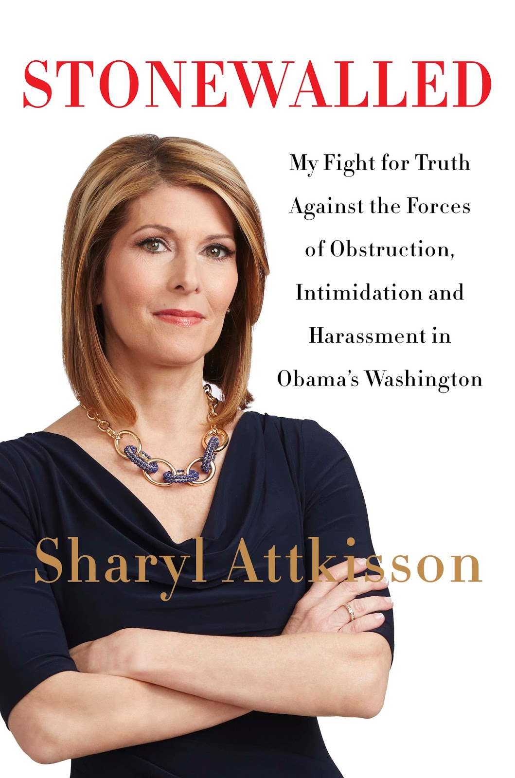 Image result for sharyl attkisson illegal surveillance
