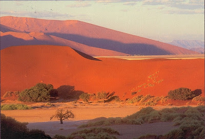 Dnenlandschaft des Sossusvlei, Namibwste in Namibia