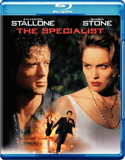 The Specialist 1994 Hindi Dubbed Dual Audio BRRip 300mb