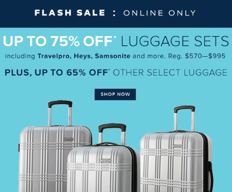 Hudson's Bay Flash Sale Up To 75% Off Luggage Sets