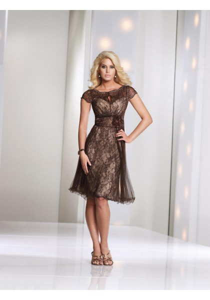 Brown Lace A Line Mother Of The Bride Dress