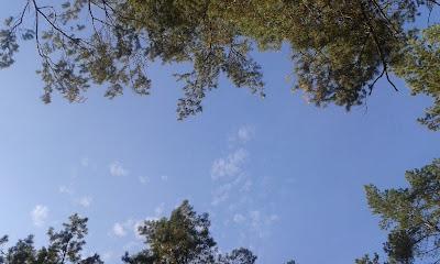 październikowe niebo