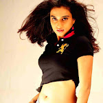 Dimple Chopda Spicy Photo Gallery