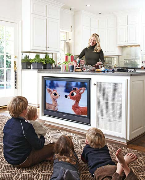 Kitchen Remodel Television Shows