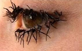 They re Real on day 2 without removal   Not really  they re fly legs    Ugly Clumpy Eyelashes