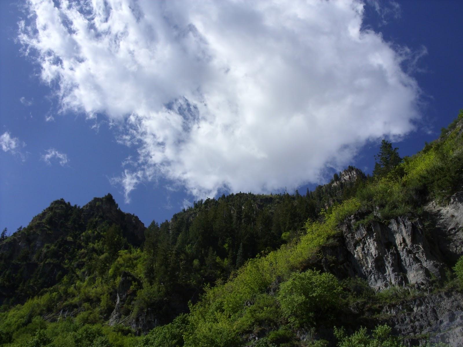 hike to Stewart Falls, good view, waterfall