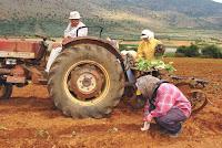 ΛΑΪΚΗ ΣΥΣΠΕΙΡΩΣΗ ΣΤΕΡΕΑΣ: Πρόταση ψηφίσματος αλληλεγγύης στην αγωνιζόμενη αγροτιά.