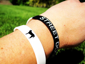Street Dogs Wristband
